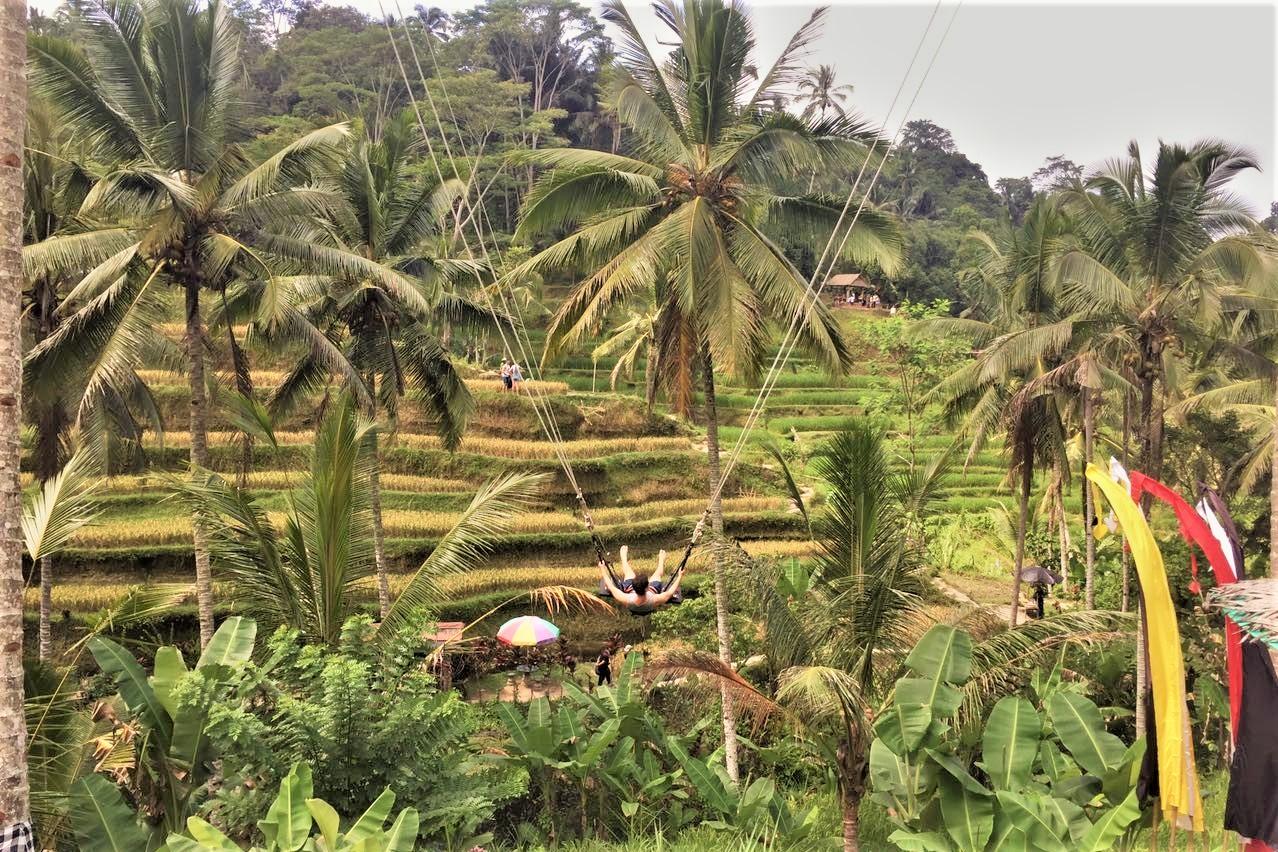 Bali Swing: vivi Bali in altalena!