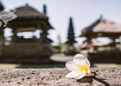 Una giornata alla scoperta dei siti UNESCO di Bali