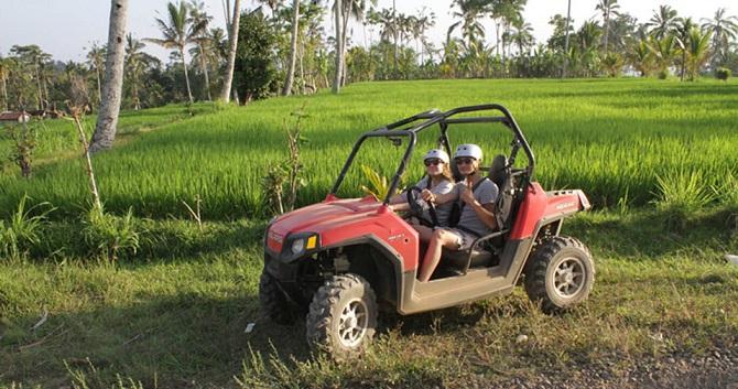 Scopri il bello di Bali a bordo di una buggy car