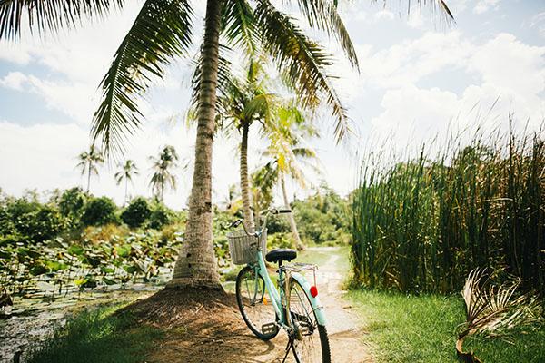 Tour in bicicletta a Bali: pedala nei dintorni di Ubud