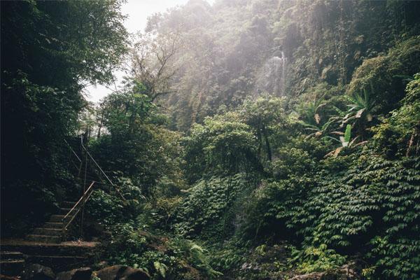 trekking natura bali